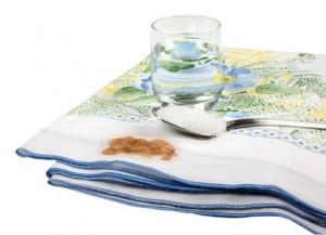 Alternative Reinigungsmittel - wie unsere Vorfahren putzten!
